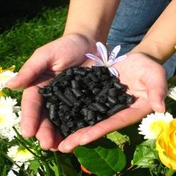 NewEarth+E-Coal