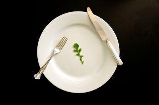 1103GH_Foodfight